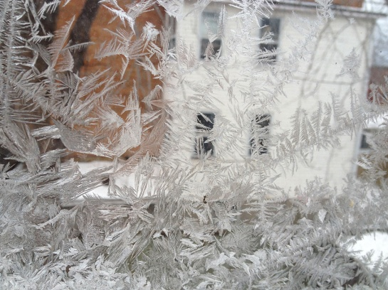 Eisblumen an meinem Fenster - Ice flowers on my window